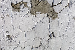 Texture of old stucco wall Stock Photography