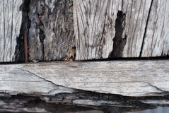 Texture of old teak wood Royalty Free Stock Photos