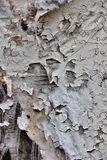 Texture of old torn fabric on wooden surface Royalty Free Stock Images