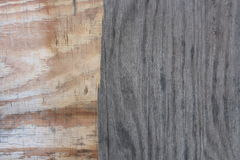 Texture of old tree. Brown grey  board, small wooden sheet, log, arboreal rings Royalty Free Stock Photos