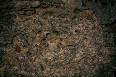 Texture_of_an_old_wall_2 Stockfotografie
