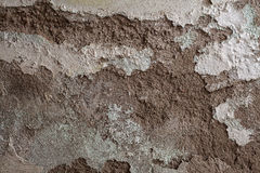 Texture of an old Wall Royalty Free Stock Images