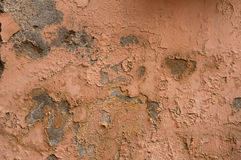 Texture of old walls with pink stucco Stock Image