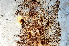 Texture of an old white rusted metal iron sheet. Detailed rust background. Or texture Royalty Free Stock Photo