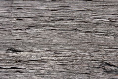 Texture of old wood. Texture of very old wood stock photos
