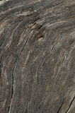 Texture of the old wood. Royalty Free Stock Photo