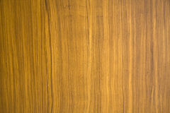 Texture of old wood background stock photos