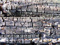 Texture old wood background Royalty Free Stock Photos