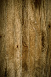 Texture old wood background , oak wood backgroound. Texture old wood background , oak wooden background Royalty Free Stock Images