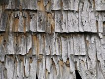 Texture of the old wood chips Royalty Free Stock Image