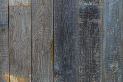 The texture of the old wood. Close up Royalty Free Stock Photography