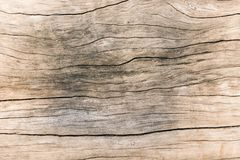 Texture old wood , dirty surface wood background, hardwood Stock Photos
