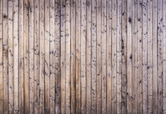 Texture. The texture of an old wood fence Stock Image