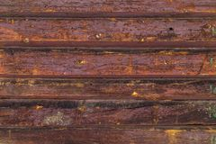 The texture of the old wood. Front view texture of the old wood close up Stock Photos