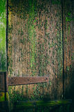 Texture of old wood. Texture of the old wood green painted background Stock Images