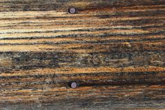 Texture old wood with nails Royalty Free Stock Image