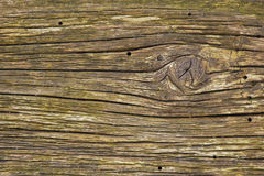 Texture of old wood Royalty Free Stock Photos