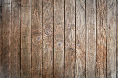 Texture of old wood panel Royalty Free Stock Image