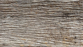 Texture of old wood Royalty Free Stock Photography