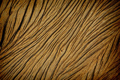 Texture of old wood used as background royalty free stock photo