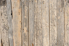 Texture of old wood Royalty Free Stock Images