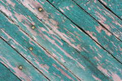 Texture of old wood with worn green paint Stock Images