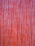 The texture of the old wooden board coral color.  stock images