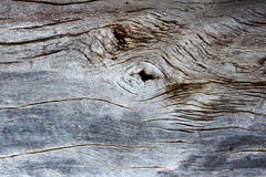 Texture of old wooden board Stock Images