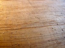 Texture. The old wooden board,warm colors royalty free stock photos