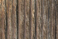Texture of old wooden boards Stock Image