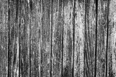 Texture of old wooden door Stock Images