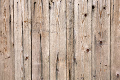 Texture of old wooden lining boards wall Stock Image