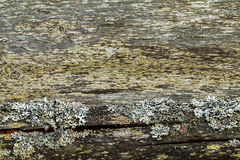 The texture of old wooden planks. Royalty Free Stock Photo