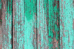 Texture of old wooden planks with cracked green paint Stock Image