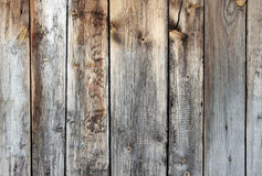 The texture of old wooden. Planks with stripes and swirls Royalty Free Stock Image