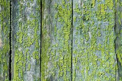 Texture of old wooden planks. stock photography