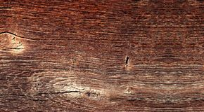 Texture of old woody surface with knots in panoramic format royalty free stock images