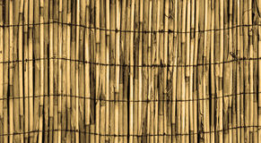 Texture of old yellow wall of bamboo Royalty Free Stock Images