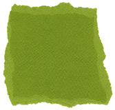 Isolated Fiber Paper Texture - Olive Drab XXXXL Stock Images