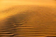 Texture onduleuse arénacée jaune de dunes Photos stock