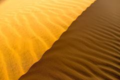 Texture onduleuse arénacée jaune de dunes Photographie stock libre de droits