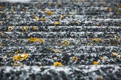 Texture onduleuse d'un toit gris avec les taches jaunes Photos stock