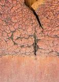 Texture orange Photographie stock libre de droits