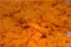 Texture orange abstraite Photo libre de droits