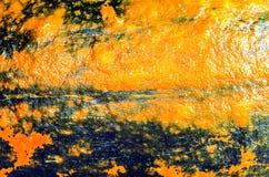 Texture of orange and black pumpkin Stock Photography