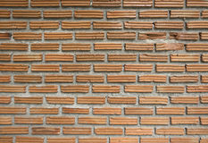 Texture of orange brick wall Royalty Free Stock Images