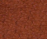Texture ou fond de cuir de Brown Photo libre de droits