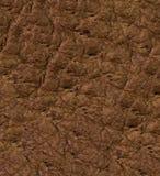 Texture ou fond de cuir de Brown Photographie stock libre de droits