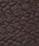 Texture ou fond en cuir noire Photographie stock