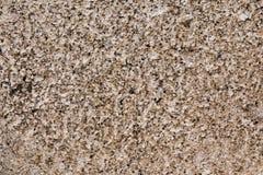 texture ou fond poreuse de brique image libre de droits
